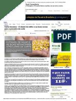 Carta Insumos - O Etanol de Milho e as Boas Novas Para a Pecuária de Corte - SCOT CONSULTORIA