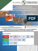 Cornejo, 2012. MEsa de Trabajo, -Contaminacion-del-suelo-en Chile.pdf