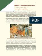 Oyarzun y otros, 2010. Geoquímica Ambiental e Indicadores Geobotánicos.pdf