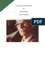 Coletânea de Artigos de João Wzorek