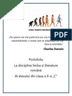 Prezentare Portofoliu.docx