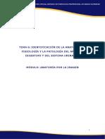 UD6 API PDF