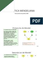 Genetica Mendeliana Clase