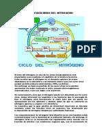 DESEQUILIBRIO DEL NITROGENO.docx