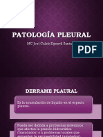 05 Patología Pleura Derrame Plaural