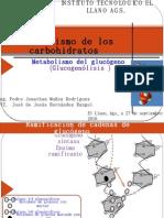 Presentacion_glucogenolisis_27.09.10