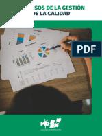 08 Manual - Procesos de la Gestión de la Calidad.pdf