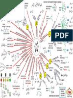 Tajwid Diagram.pdf