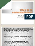 Qué Es La Sustentabilidad