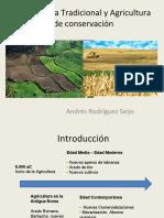 agriculturatradicionalyagriculturadeconservacin-130816145712-phpapp02