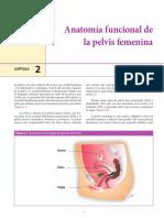 ANATOPELVICA.pdf