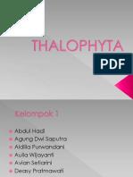 THALOPHYTA