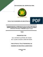 Buitron Vilcapoma - TESIS (3).pdf