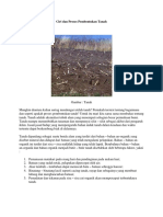 Ciri Dan Proses Pembentukan Tanah