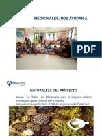 1536835074925_0_PPT Las plantas  medicinales para analisis.ppt