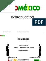 Comercio Exterior - Introducción 2007