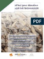 Brochure Biomass e