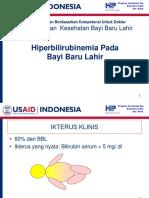 hiperbilirubunemia pada   neonatus.ppt