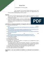 Ensayo Final PPAL.pdf