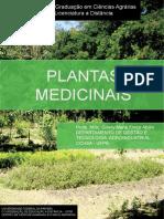 plantas_medicinais_1462975221.pdf