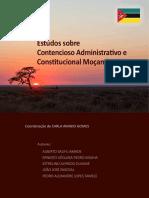 ESTUDOS SOBRE CONTENCIOSO ADMINISTRATIVO E CONSTITUCIONAL.pdf