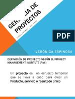 gerenciadeproyectos-13205143056184-phpapp01-111105123337-phpapp01.pptx