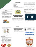 TRIPTICO INFORMATICA.pdf