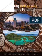 Realizing Indonesia's Economic Potential.pdf