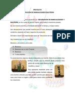 Proyecto Decoración de Manualidades