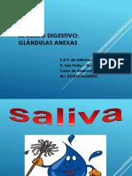 8Higado.pdf