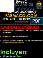 3 Amino Glu Cocido s