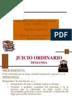 Presentacion Proceso Civil (primera instancia) (1).pdf