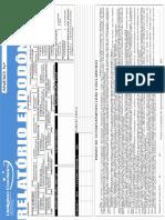 Relatório Endo Ueligton Passamani.pdf