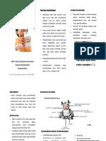 Leaflet ALERGI SUSU SAPI DISA