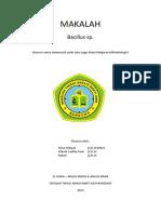 docdownloader.com_makalah-identifikasi-bacillus-sp.pdf