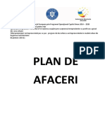 1 Model de Plan de Afaceri_word