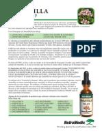 amantilla_spanishflyer.pdf