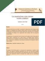 Ávila-Las organizaciones como sistemas sociales complejos
