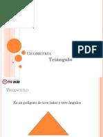Triangulo Area y Perimetro