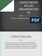 Capacitacion en Las Organizaciones