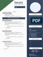 CV Template by Ahmed SBEATA
