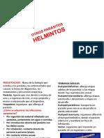 Parásitología 8