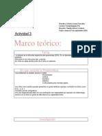 Actividad 3 victoria lizama  metodologia de la investigacion.docx