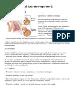Enfermedades Del Aparato Respiratorio 5 Ejemplos