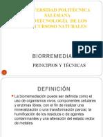 biorremediacin-121029162333-phpapp02