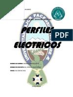 perfiles electrcos