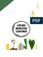 63_Inteligencia_emocional_aplicada_al_entorno_familiar.pdf