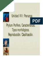 poriferos.pdf