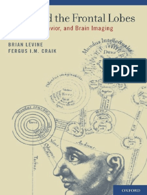 Download Free Brian Levine Mind And The Frontal Lobes 2011 A Pdf Frontal Lobe Prefrontal Cortex PSD Mockup Template