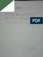 Vatasianu Istoria Artei Feudale Din Romania